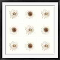 Framed Neutral Bouquet