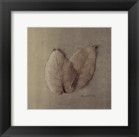 Pair Of Skelton Leaves Framed Print