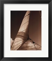 Windward Sail II Framed Print