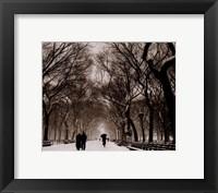 Framed Central Park