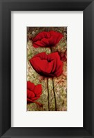 Framed Poppies III