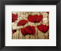 Poppies II Framed Print