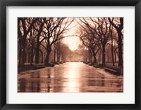 Framed Rainy Day - Central Park