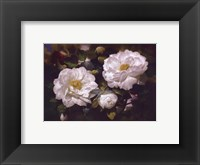 Full Blossom I Framed Print