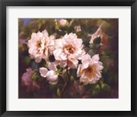 Framed Full Blossom II