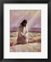 Framed Shepherd