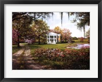 Framed Wild Rose Manor