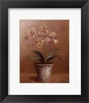 Olivia's Flowers I Framed Print
