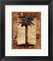 Classic Palm I Framed Print