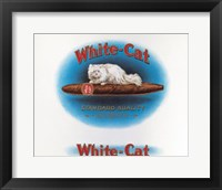 Framed White Cat