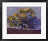 Twilight Oak III Framed Print