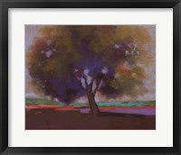 Twilight Oak IV Framed Print