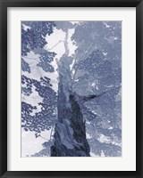 Blue Lace I Framed Print