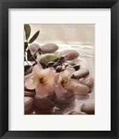 Spa River I Framed Print