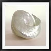 Framed Shell II