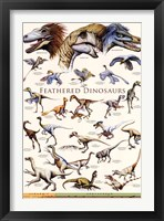 Feathered Dinosaurs II Framed Print