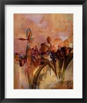 Framed Wild Amaryllis