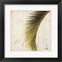 Baru Palm II Framed Print