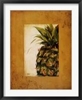 Media Pina I Framed Print