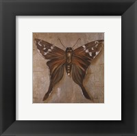 Framed Brown Butterfly