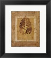 Golden Glow Leaf II Framed Print