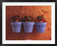 Framed Mediterranean Pots