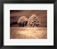 Framed Together and Alone I