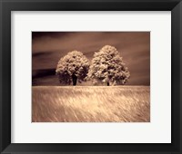 Together and Alone I Framed Print
