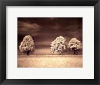 Framed Together and Alone II