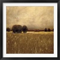 Framed Ridge Field
