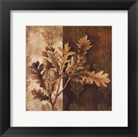 Leaf Patterns I Framed Print