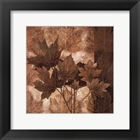 Leaf Patterns II Framed Print