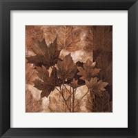 Leaf Patterns II Framed Print