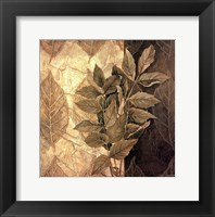 Leaf Patterns IV Framed Print