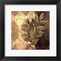 Leaf Patterns IV Framed Print