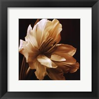 Timeless Grace I Framed Print