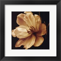Timeless Grace III Framed Print