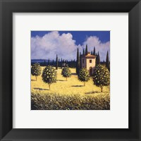 Framed Sun Kissed Orchard I