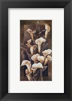 Framed Golden Calla Lilies