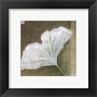 Framed Soothing Ginko