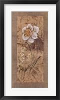 Framed Antique Daffodil