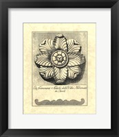 Vintage Rosette And Profile II Framed Print