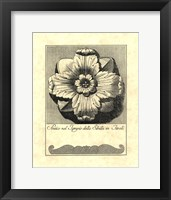 Vintage Rosette And Profile III Framed Print