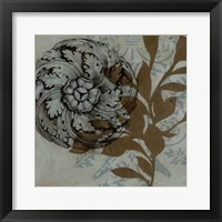 Dusty Rosettes II Framed Print