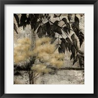 Nature's Breath II Framed Print