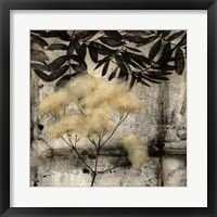 Nature's Breath III Framed Print