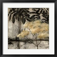 Nature's Breath IV Framed Print