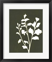 Four Seasons Foliage II Framed Print