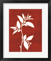 Four Seasons Foliage III Framed Print