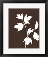Four Seasons Foliage IV Framed Print